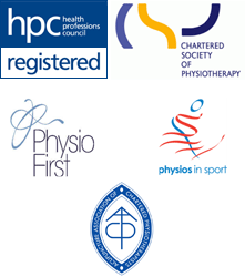 Members of HPC, CSP, Physio First and Physios in Sport
